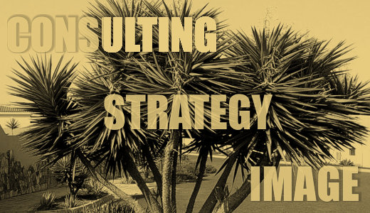 CONSULTING, STRATEGY, IMAGE